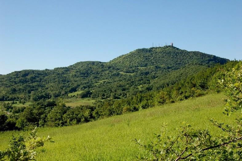 Monte Pallano